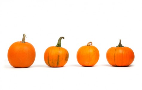 Four Fall Recipes for Pumpkin Lovers