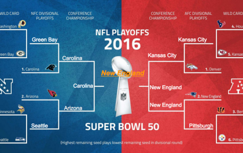 2016 NFL Playoff Preview