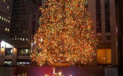 Rockefeller Tree arrives in Rockefeller Center